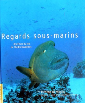 Regards sous-marins
